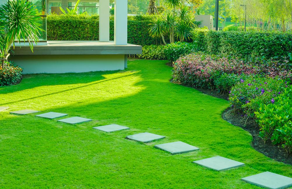 jardinage 3 conseils pour bien choisir votre gazon. Black Bedroom Furniture Sets. Home Design Ideas