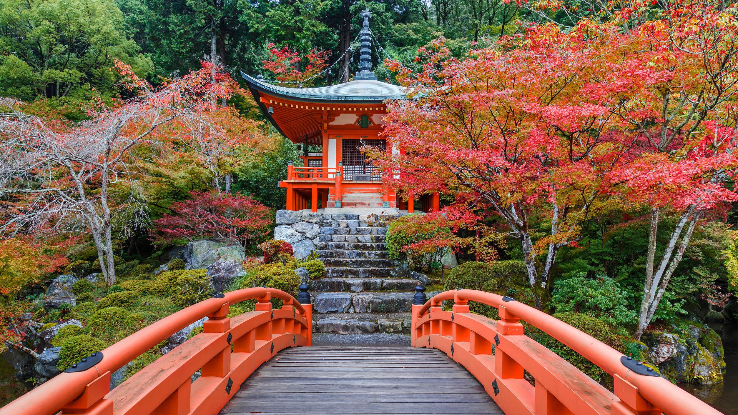 Maison Japonaise Traditionnelle Construire l'habitat ailleurs: le japon - arthurimmo le mag